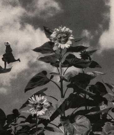 happyflowers6